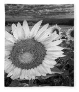 Sunflower Field Forever Bw Fleece Blanket