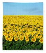 Sunflower Field, North Dakota, Usa Fleece Blanket