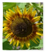 Sunflower Glory Fleece Blanket