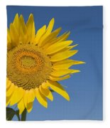 Sunflower, Helianthus Annuus Fleece Blanket