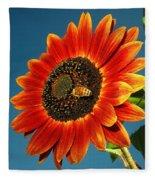 Sunflower Honey Bee Fleece Blanket