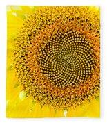 Sunflower In The Summer Sun Fleece Blanket