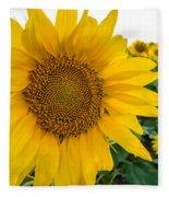 Fibonacci In Full Bloom Fleece Blanket
