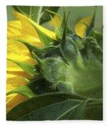 Sunflower Opening Fleece Blanket