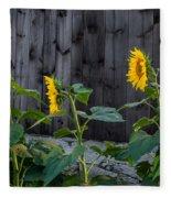 Sunflower Quartet Fleece Blanket