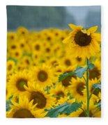 Sunflower Rain Sussex Nj Fleece Blanket