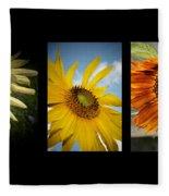 Sunflower Trio  Fleece Blanket