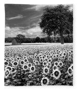 Sunflowers In Black And White Fleece Blanket