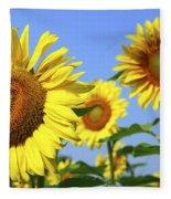 Sunflowers In Field Fleece Blanket