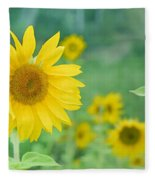 Sunflowers Vintage Dreams Fleece Blanket