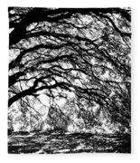Sunlight Through Spanish Oak Tree - Black And White Fleece Blanket