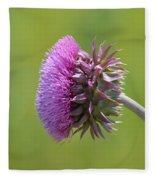 Sunlit Thistle Fleece Blanket