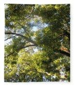 Sunlit Tree Tops Fleece Blanket