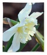 Sunlit White Daffodil Fleece Blanket