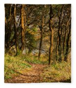 Sunlit Woods In Late Autumn Fleece Blanket