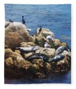 Sunning Seals Fleece Blanket