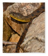 Sunning Snake Fleece Blanket