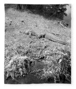 Sunny Gator Black And White Fleece Blanket