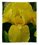 Sunny Rain Fleece Blanket
