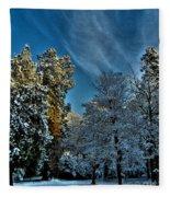 Sunny Winter Day Fleece Blanket