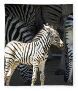 Sunny Zebra Fleece Blanket