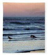 Sunset Birds Fleece Blanket