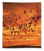 Sunset Flight Fleece Blanket