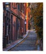 Sunset In Beacon Hill Fleece Blanket