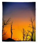 Sunset In Mesa Verde Fleece Blanket