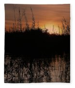 Sunset In The Pantenal Fleece Blanket