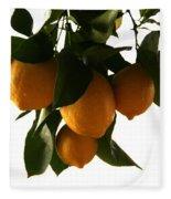 Sunset Lemons Fleece Blanket