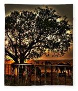Sunset On A Texas Drought Fleece Blanket
