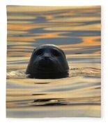 Sunset Seal Fleece Blanket