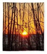 Sunset Through Grasses Fleece Blanket