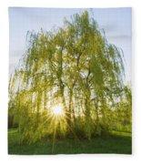 Sunset Willow Fleece Blanket