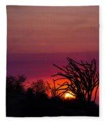Sunset With Octopus Tree Fleece Blanket