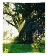 Sunshine And Sunbeams Fleece Blanket