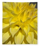 Sunshine Dahlia Fleece Blanket