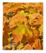 Sunshine Of Fall Fleece Blanket