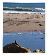 Surf Watching Squirrel Fleece Blanket
