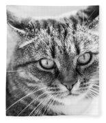 Surprised Cat Fleece Blanket