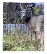 Surprised Deer Fleece Blanket