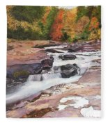Swallow Falls Fleece Blanket