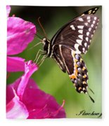 Swallowtail And Azalea - Love Fleece Blanket