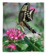 Swallowtail Butterfly 01 Fleece Blanket