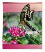 Swallowtail Butterfly 02 Fleece Blanket