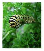 Swallowtail Caterpillar Fleece Blanket
