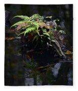 Swamp Fern Fleece Blanket