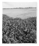 Swamp Hyacinths Water Lillies Black And White Fleece Blanket