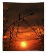 Swamp Sunset  Fleece Blanket